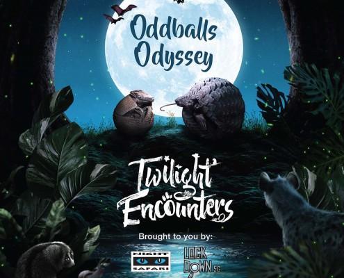 Oddballs Odyssey